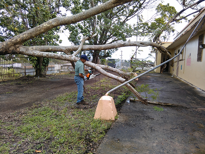 Pioneering Puerto Rican fiscal sponsor leads grass-roots hurricane recovery effort